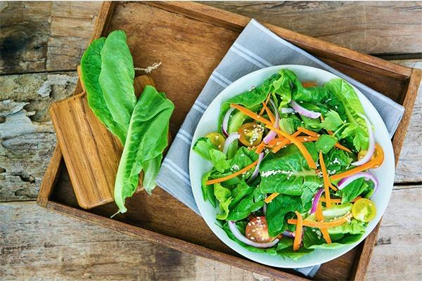 رژیم سبزیجات از انواع رژیم لاغری