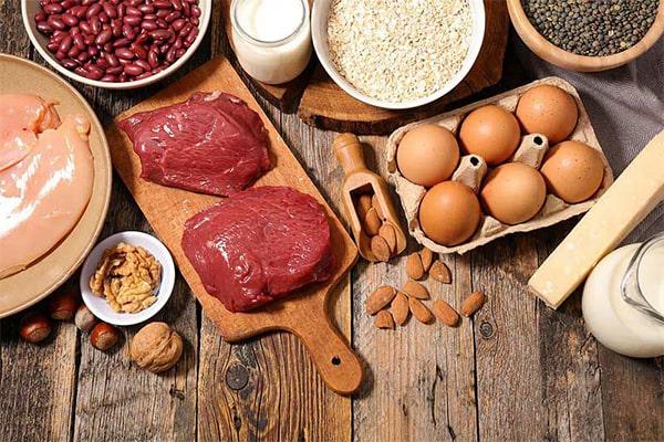 منابع رژیم پروتئین